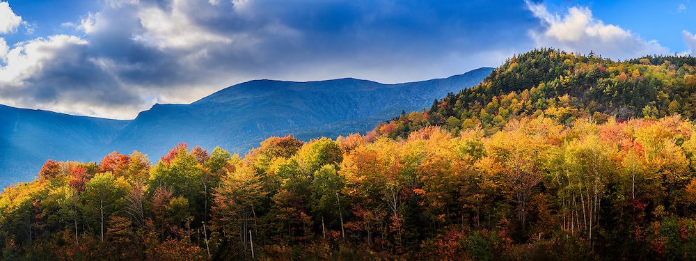 Looking up past fall trees at Mount Washington in the White Mountains,f NH.