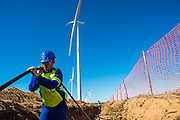 Laying the electricity cables from the turbine to the substation