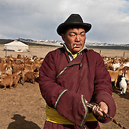 Mongolia. Cashmere goats. nomads, cattle breeders in the countryside near Lun, ,  Lun -    /   chevres a cachemire.  eleveurs nomades dans la steppe pres de Lun;   lun - Mongolie