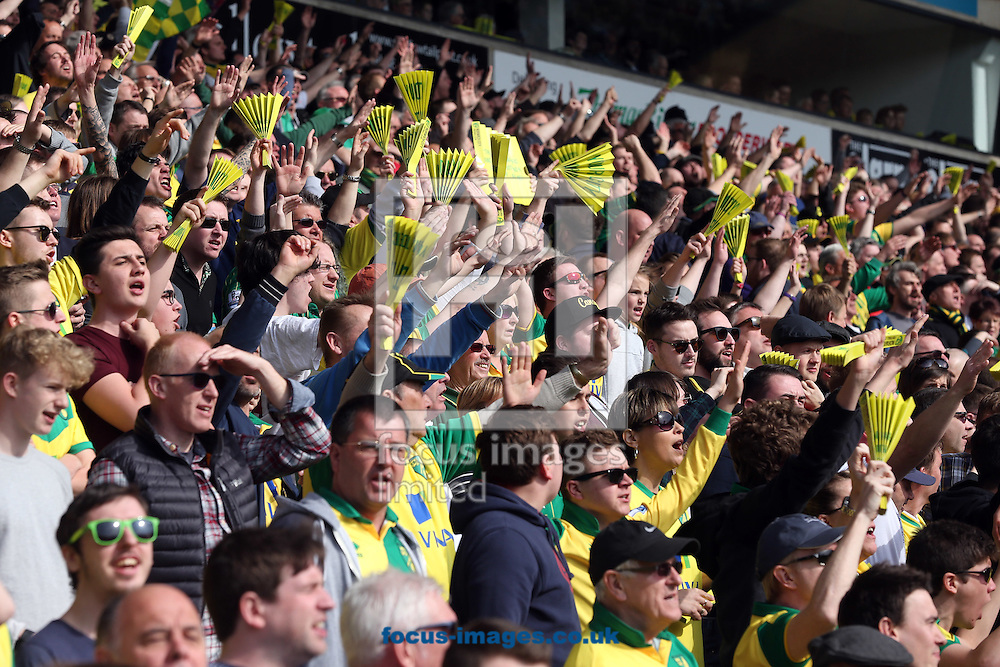 The Norwich fans get behind their side before the Barclays Premier League match at Carrow Road, Norwich<br /> Picture by Paul Chesterton/Focus Images Ltd +44 7904 640267<br /> 02/04/2016