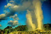 Geysers, Whakarewarewa Thermal Reserve, Rotorua, New Zealand