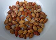ponderosa pinenuts