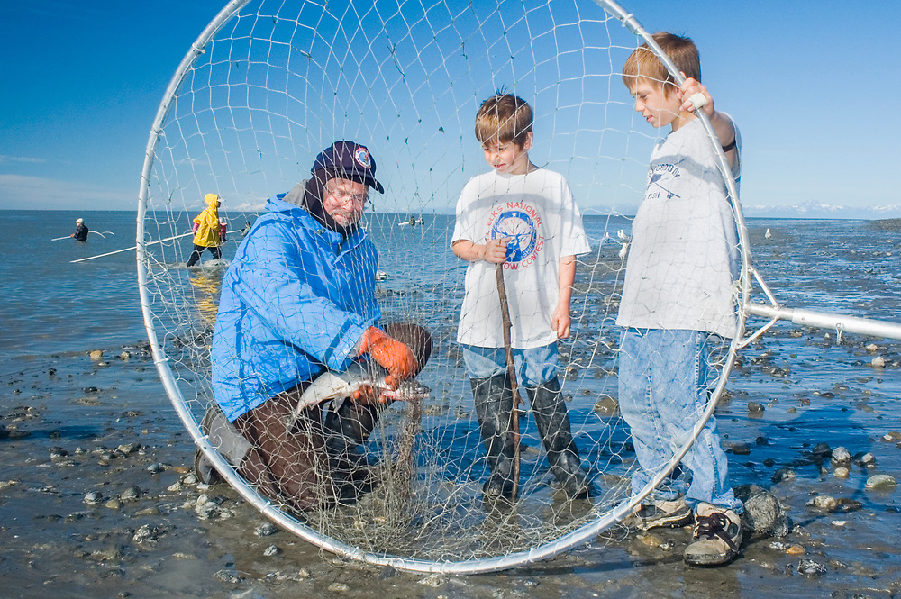 USA, Alaska, Kenai Peninsula, Rivers,  people trying their hand at dipnetting salmon from shore with a large net on a long aluminum pole. Red, King salmon species.