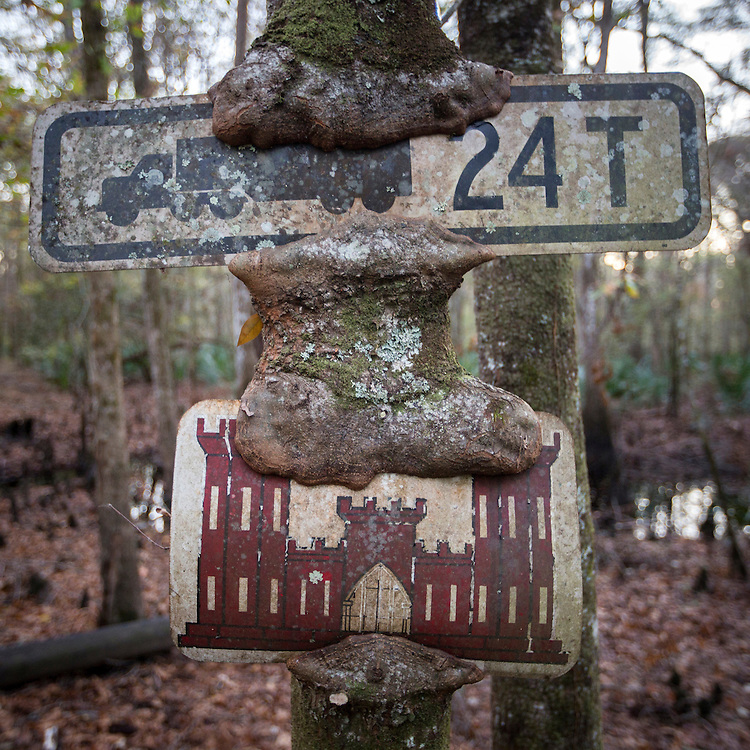 OLIVER, GA - DEC., 15, 2016: Two signs for a timber bridge that washed away on Lynda Beam's TooHolly farm, Thursday, December 15, 2016, in Oliver, Ga. (Photo by Stephen B. Morton for Georgia Forestry Magazine)