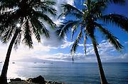 Lahaina, Maui, Hawaii, USA<br />