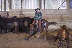 April 30 2017 - Minshall Farm Cutting 2, held at Minshall Farms, Hillsburgh Ontario. The event was put on by the Ontario Cutting Horse Association. Riding in the 5,000 Novice Horse Class is Troy Donaldson on Dual Peps Tom Cat owned by James Cook.