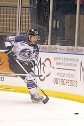 15 November 2013: Paul D'Agostino. Louisiana IceGators at Bloomington Thunder Southern Professional Hockey League (SPHL) at the U.S. Cellular Coliseum in Bloomington Illinois