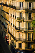 Morning light on apartments in the Latin Quarter, Paris, France
