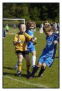 Basingstoke Colts FC Tournament. Sat 3-6-2006.