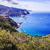 Catalina Island Avalon Bay aerial picture from above in the mountains. Catalina Island is a popular travel destination off the coast of Southern California in the United States.