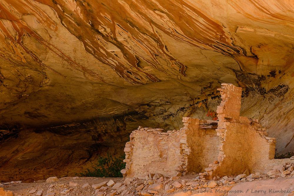Monarch Cave ruins on Comb Ridge; Cedar Mesa, UT
