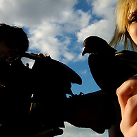 ORLANDO, FL -- January 30, 2008 -- Keri Sundin, right, and her boyfriend, Justin Bighouse, both of Orlando feed pigeons at Lake Eola Park in Orlando, Fla., on Friday, January 27, 2006.  The popular park was developed during the citrus industry boom in the 19th century and offers a tranquil haven set against the city's downtown to paddle around the floating fountain or jog the lake's perimeter.