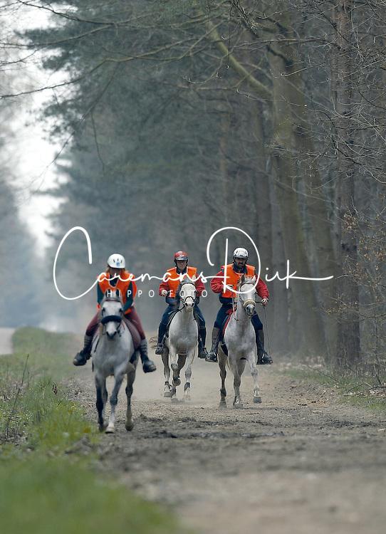 Warnij Florence - Kamilia des Iviers<br /> Endurance Peer 2002<br /> &copy; Hippo Foto - Dirk Caremans