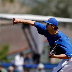 Mar 14, 2013; Dunedin, FL, USA; Toronto Blue Jays starting pitcher Josh Johnson (55) throws against the New York Yankees during the top of the second inning of a spring training game at Florida Auto Exchange Park. Mandatory Credit: Derick E. Hingle-USA TODAY Sports