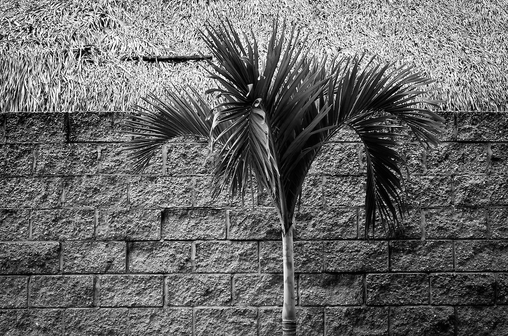 DESDE EL AUTOEXILIO<br /> Photography by Aaron Sosa<br /> Farallon - Panama 2012