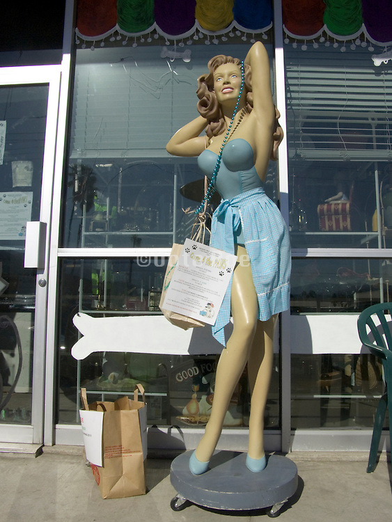 sexy posing mannequin displayed outside a thrift store