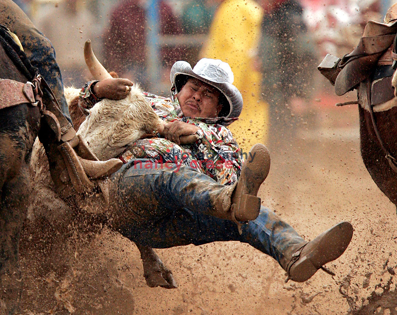 Marvin Murphy, #366, competes in the steer wrestling competition at the Parada del Sol Rodeo in Scottsdale, Arizona, on February 12, 2005.