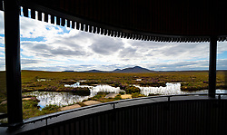 View from visitor viewing tower of landscape of the Flow Country at RSPB Forsinard Flows Nature Reserve in Sutherland, Scotland, UK