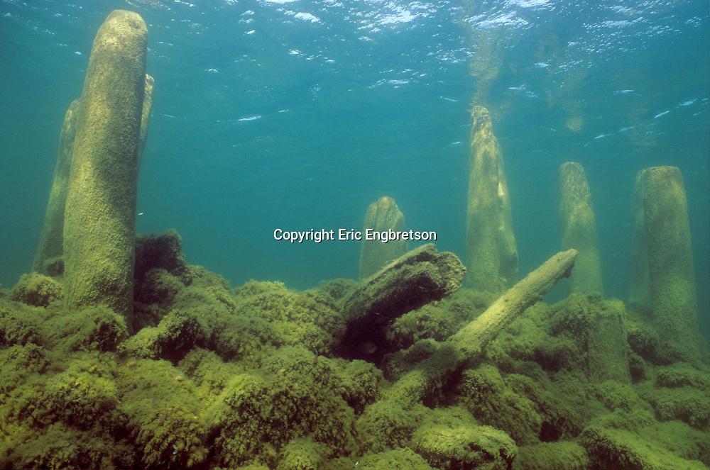 Underwater Scene-Old pier pilings, Lake Michigan<br /> <br /> ENGBRETSON UNDERWATER PHOTO