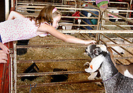 A glimpse of the Montgomery County Fair at the Fairgrounds near downtown Dayton, Thursday, September 3, 2009.