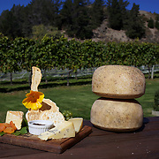 A cheese platter at The Gibbston Valley Cheesery located in Queenstown's Valley of Vines, high in the southern mountains of New Zealand. Gibbston Valley Cheesery specialises in sheep, cow and goat milk cheeses hand-crafted in European style. The premises features a cafe, retail shop, cheese-making presentation and complimentary tastings of the Gibbston Valley Cheese range. Queenstown, Central Otago, New Zealand. 23 March  2011.  Photo Tim Clayton.