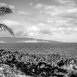 Maui Hawaii black and white panorama photo at Wailea Makena with a palm tree along Wailea Beach Path. In the background is an outrigger canoe and Kaho'olawe Island along the Pacific Ocean. Panoramic photo ratio is 1:3. Copyright ⓒ 2019 Paul Velgos with All Rights Reserved.