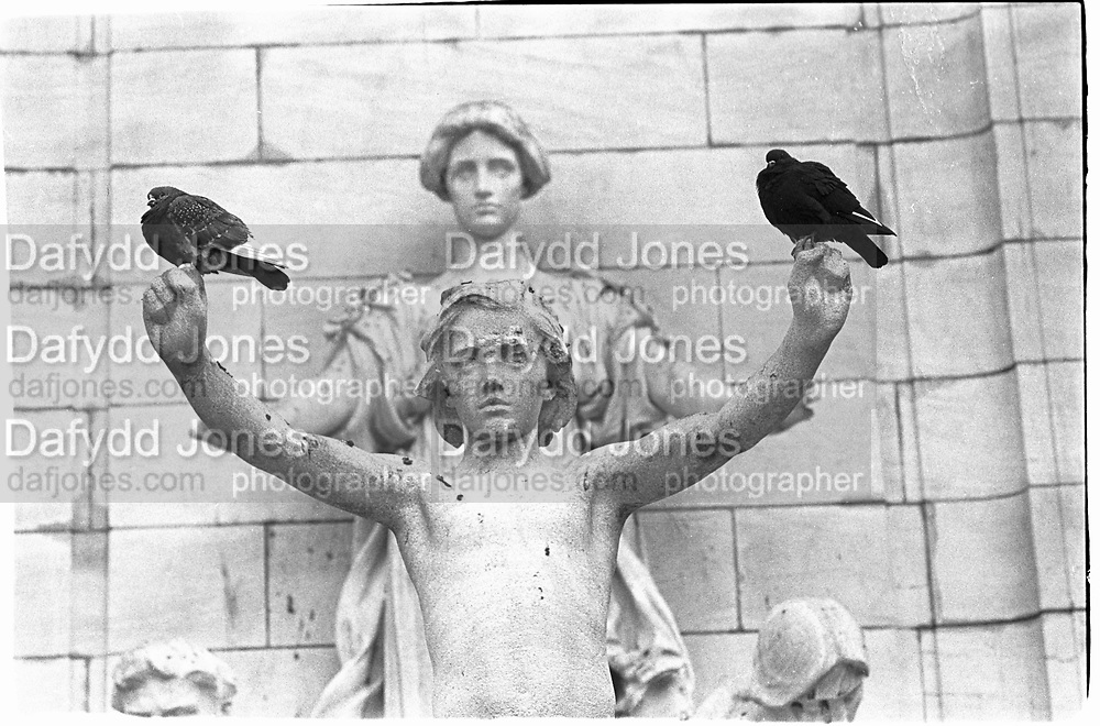 Columbus Circle- pigeons flock to war memorial commemorating the 260 sailors who perished when the Maine exploded in Hvana(1898), 1993© Copyright Photograph by Dafydd Jones 66 Stockwell Park Rd. London SW9 0DA Tel 020 7733 0108 www.dafjones.com