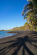 Punaluu Black Sand Beach,  Island of Hawaii
