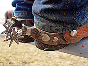 "30 JULY 2005 - WILLIAMS, ARIZONA, USA: Spurs on cowboy's boots at the Arizona Cowpunchers' Reunion Rodeo, the largest amateur rodeo in Arizona, in Williams, AZ, July 30. Professional rodeo cowboys cannot participate in the rodeo. Only working ranch cowboys and their families can participate in the rodeo, which features sports more geared to ranch life, like ""wild cow milking"" than pro rodeos, which feature bull riding. Williams, a small ranching town in northern Arizona and about an hour from the south entrance to the Grand Canyon National Park, has reinvented itself as a tourist destination. The town draws tourists going to the park and tourists who want to experience American western lifestyle. The town hosts the largest amateur rodeo in Arizona drawing contestants and spectators from across the state. PHOTO BY JACK KURTZ"