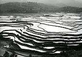 Tom Hutchins: CANTON (Guangzhou-Guangdong) 1956