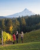 Phelps Creek lifestyle wine tasting 10-15-17