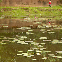 Tourist walking along of lake at Angkor Wat