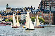 Seglingstävling med äldre vackra segelbåtar av trä på Riddarfjärden i Stockholm