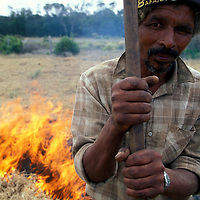 South Africa, (MR) Farm hand Nicholas Klausen  burns off fields in Western Cape Province