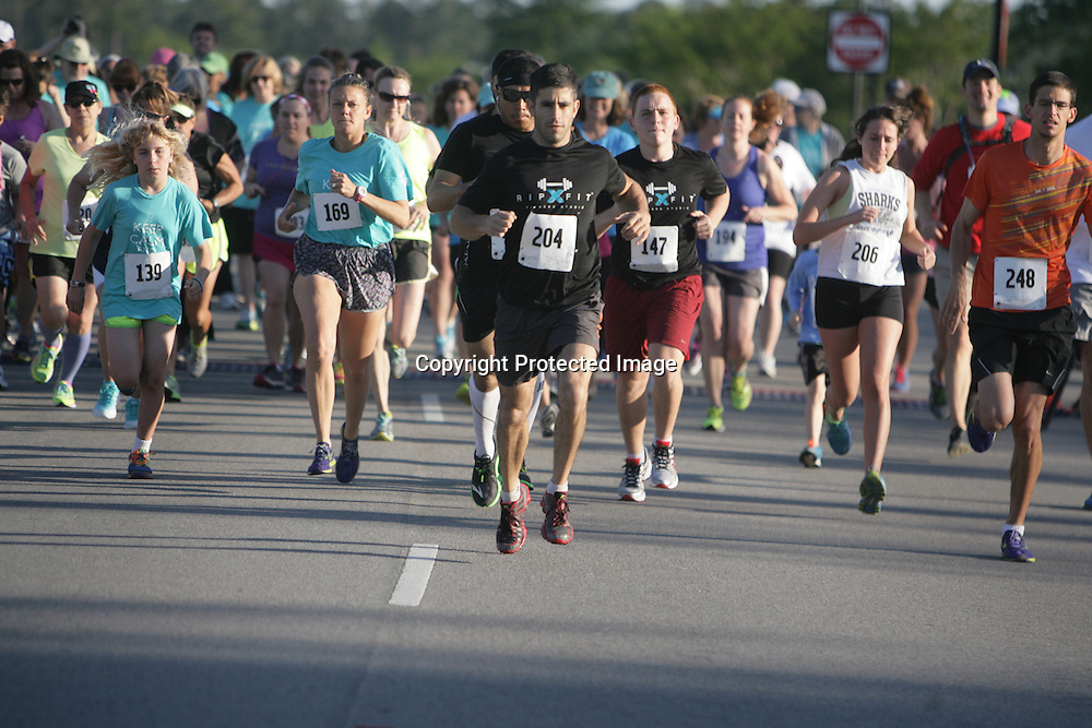 The 2014 Plantation Building Corporation Half-Marathon and Connected Home 5K was held May 4, 2014 at Brunswick Forest. (Jason A. Frizzelle)