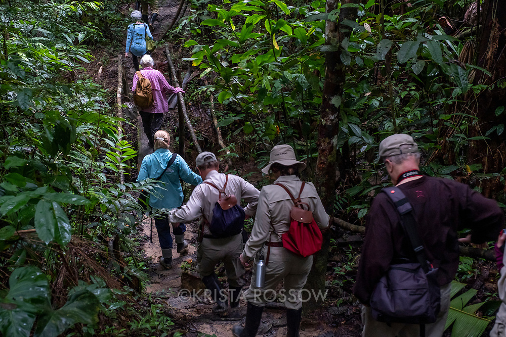 Lindblad Expeditions guests walk in the rainforest on the Casual Trail near Nauta in the Peruvian Amazon.