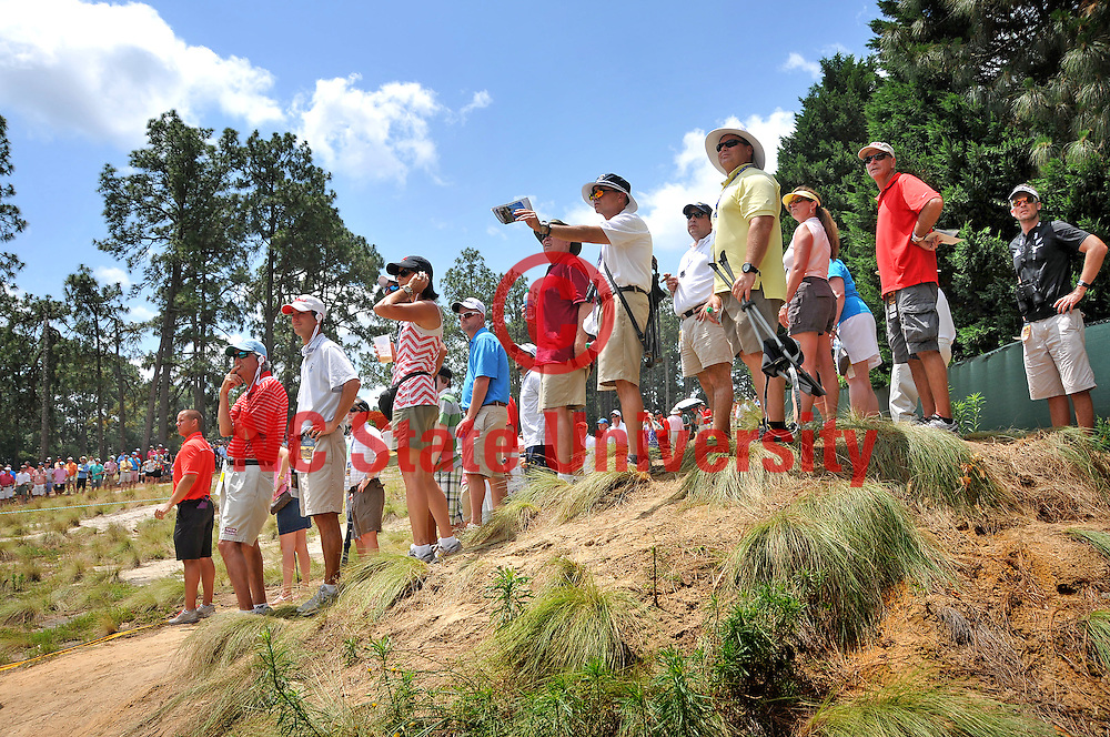 Standing in the native grasses of the sandhills, golf fans track a ball unto the 9th green at Pinehurst No. 2.