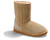 suede ugg boot