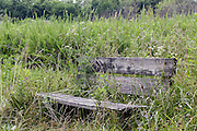 15 Jul 2011: wood bench on trail in the Moraine View State Park, LeRoy Illinois
