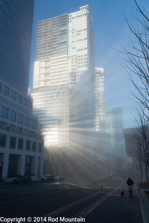 A Woman walks her dog in downtown Vancouver amongst a bright array of sunlight reflection.