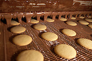 Chocolate drips on to freshly-made Moments biscuits on conveyor belt at the Delacre biscuit production factory in Lambermont