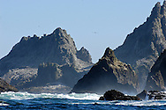 Farallon Islands.Great white shark diving paradise.San Francisco, California, United States
