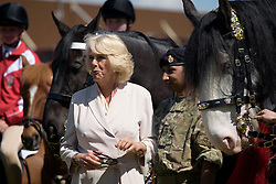 © Licensed to London News Pictures. 13/05/2015. Windsor, UK. Camilla, Duchess of Cornwall inspects horses from the household cavalry during day one of the 2015 Royal Windsor Horse Show, set in the grounds of Windsor castle in Berkshire, UK. Photo credit : Ben Cawthra/LNP