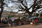 Along the banks of the Mekong River, Luang Prabang, Laos.