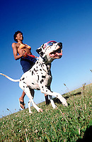 Taking the Dog for a Walk --- Image by © Jim Cummins/CORBIS