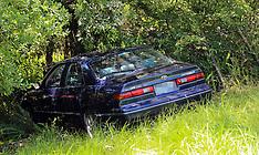 Auckland-Car down bank, Owairaka Domain, Mt Albert