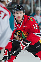 KELOWNA, CANADA - MAY 1: Miles Koules #12 of Portland Winterhawks looks for the pass against the Kelowna Rockets during second period of game 5 of the Western Conference Final on May 1, 2015 at Prospera Place in Kelowna, British Columbia, Canada.  (Photo by Marissa Baecker/Getty Images)  *** Local Caption *** Miles Koules;