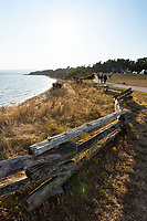 Clover Point Park in Victoria, BC, features grassy hilltops that drop to the ocean below, paved trails for walking and jogging, and an off-leash dog park.