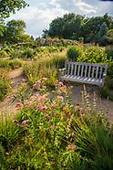 20170802 Gardens Evening