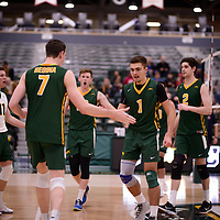 1st year setter Jake Fleming (1) of the Regina Cougars in action during Men's Volleyball home game on November 3 at Centre for Kinesiology, Health and Sport. Credit: Arthur Ward/Arthur Images